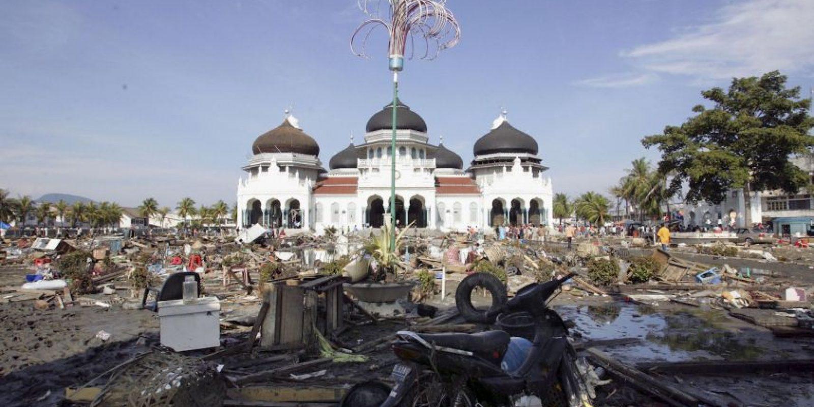 En enero de 2005, un hombre fue encontrado en las ruinas de su casa, once días después del terremoto y tsunami que afectó a diez países del Sudeste de Asia Foto:Getty Images