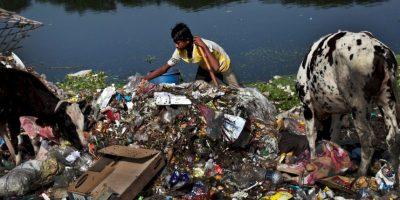 Se informa que sobrevivió con comida seca y los dos últimos días solamente con agua Foto:Getty Images
