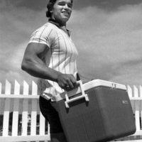 """Al contrario de lo que puedan pensar, Arnold Schwarzenegger podía interpretar bien ese papel. En """"El Vengador del Futuro"""" pudo recitar bien sus líneas. Foto:vía Getty Images"""
