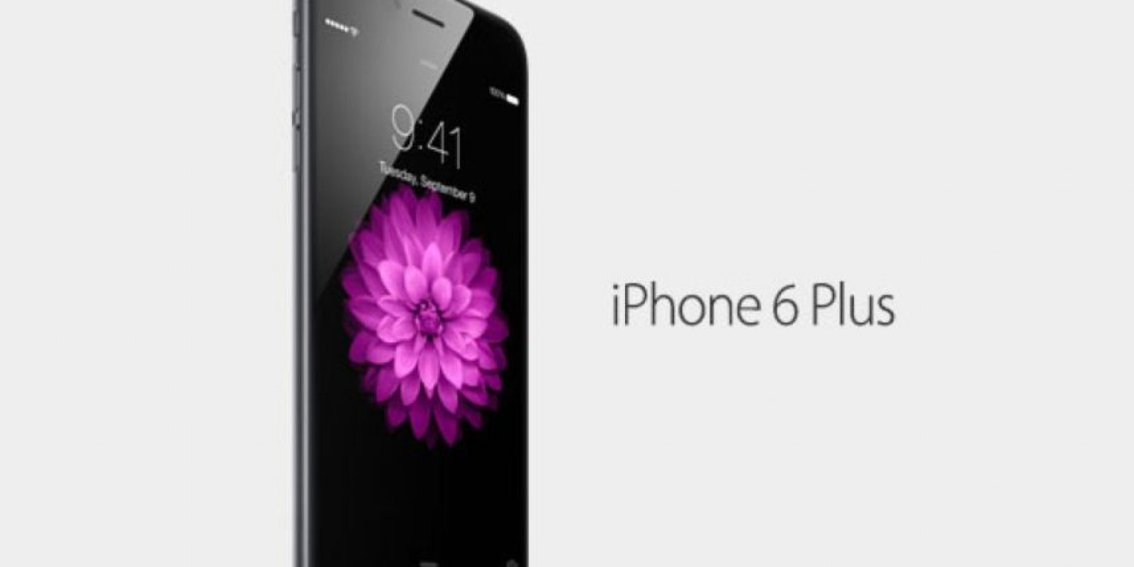 iPhone 6 Plus Foto: Apple