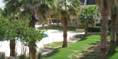 El hotel Ninawa era un hotel cinco estrellas con una tarifa accesibles Foto:Vía www.tripadvisor.com.mx