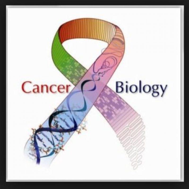 2. Los cánceres que causan un mayor número anual de muertes son los de pulmón, hígado, estómago, colon y mama. Foto:Wikimedia