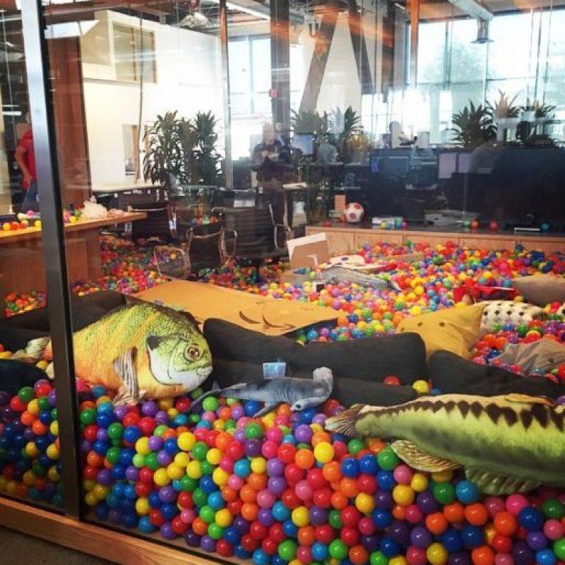 Peces y tiburones con pelotas de colores por doquier. Foto:instagram.com/bobspace