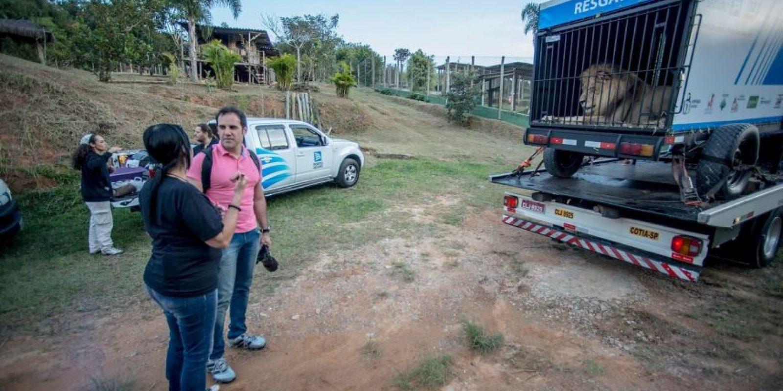 Foto:Facebook.com/RanchoDosGnomos