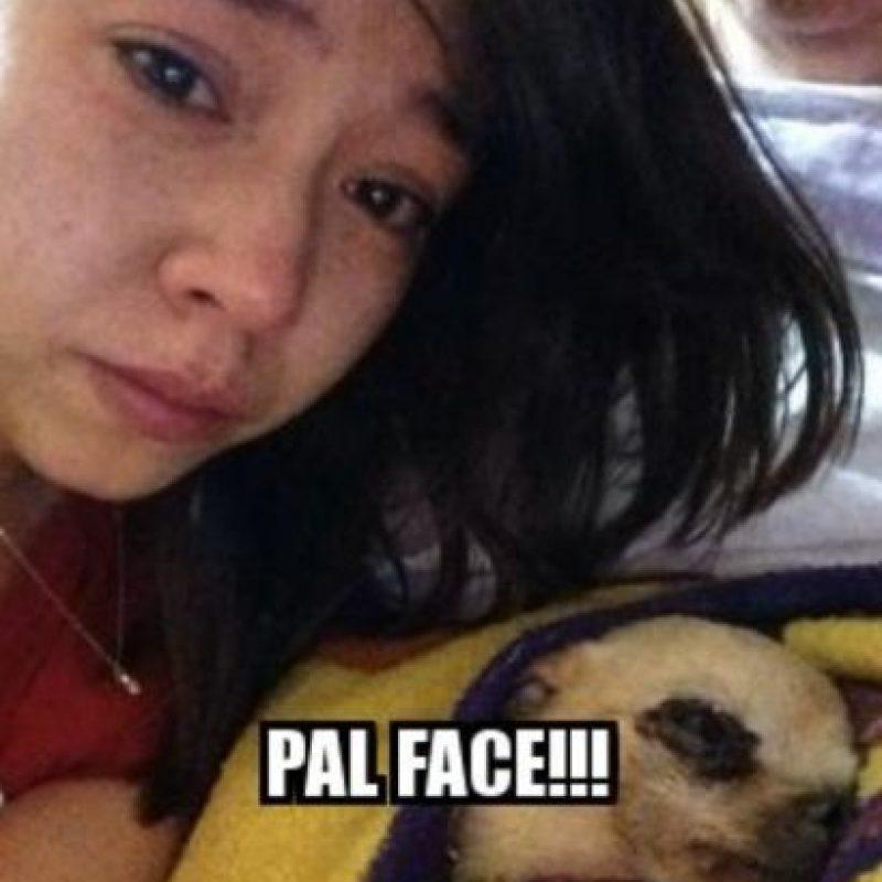 """Pa'l Face"" Foto:Memegenerator"