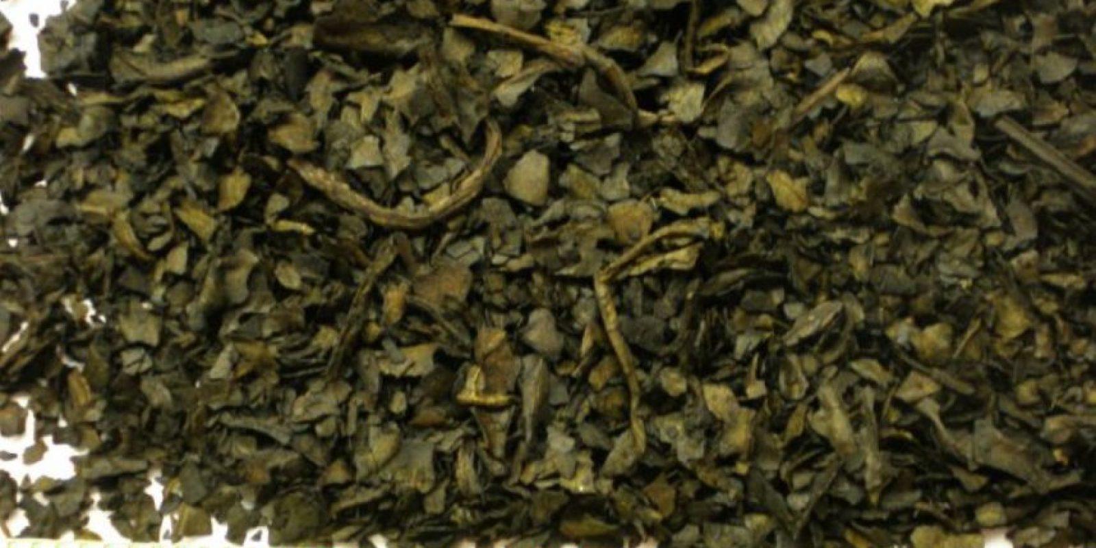 Salvia: Salvia Divinorum, otra droga sintética derivada de una hierba natural, en este caso de las hojas de menta. Se usaba para ritos tribales. Tiene compuestos que no son alcaloides y se puede consumir de forma natural. La sensación producida por la salvia es una liberación de adrenalina y euforia, gracias a su sustancia estrella: la salvinorina-A. Foto:vía Wikipedia
