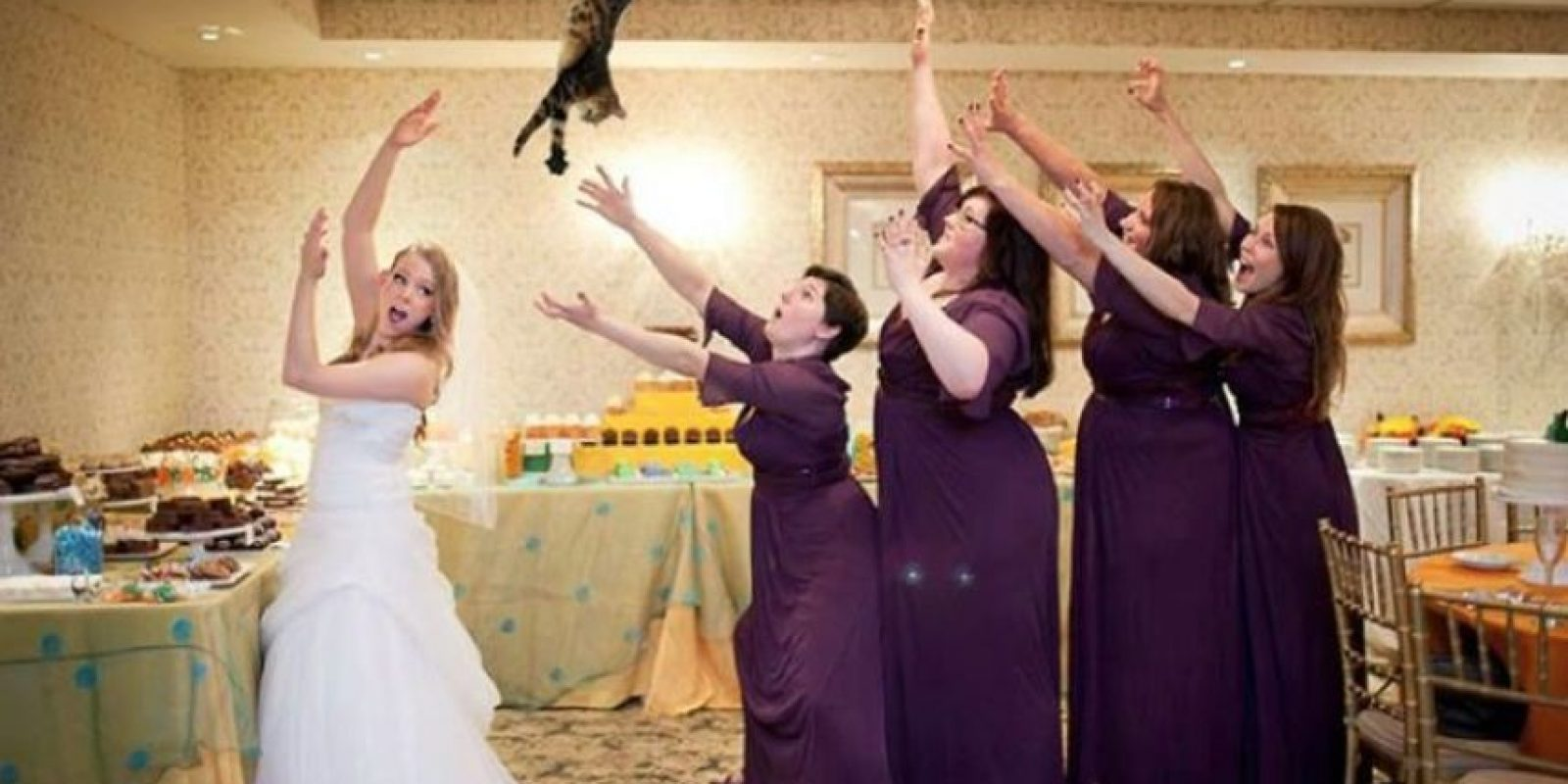 Foto:Vía bridesthrowingcats.com