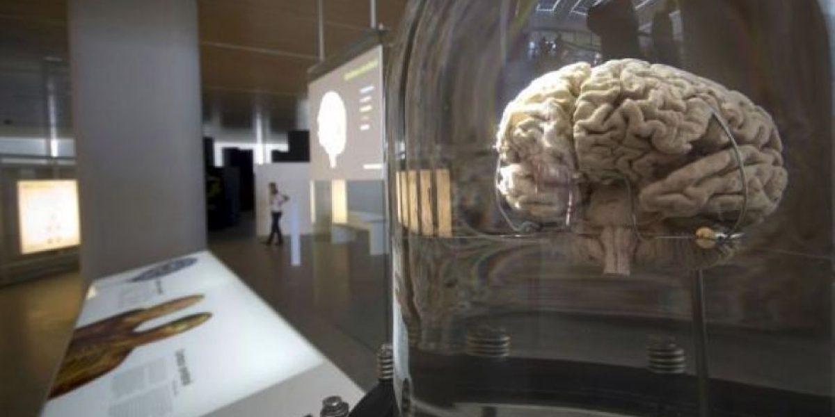Científica dijo que se puede escribir y teletransportarse con la mente