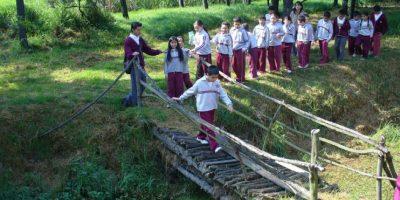 Un recorrido por el parque en el marco del proyecto de restauración y conservación del humedal de Techo Foto:Tomada de corpolagoscastilla.org