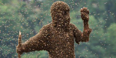 Lu Kongjiang, es otro apicultor que ha dejado que las abejas se posen en su cuerpo. Foto:Getty Images