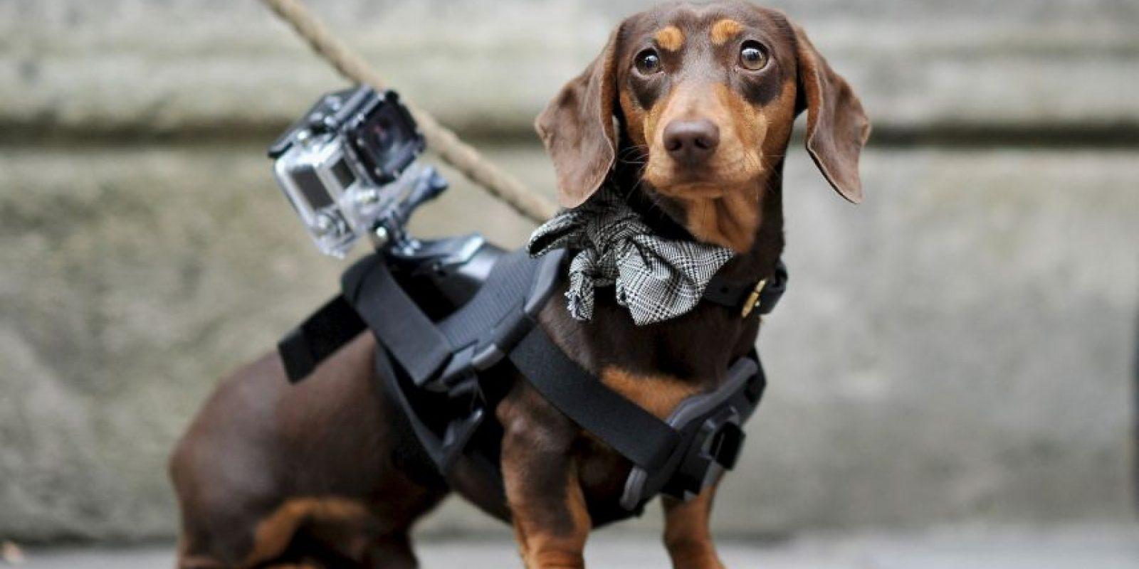 O en cualquier cosa Foto:Getty Images