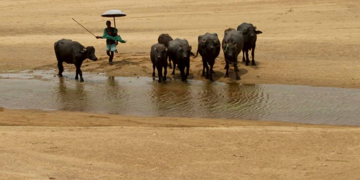 5 claves sobre la trágica ola de calor que azota a India