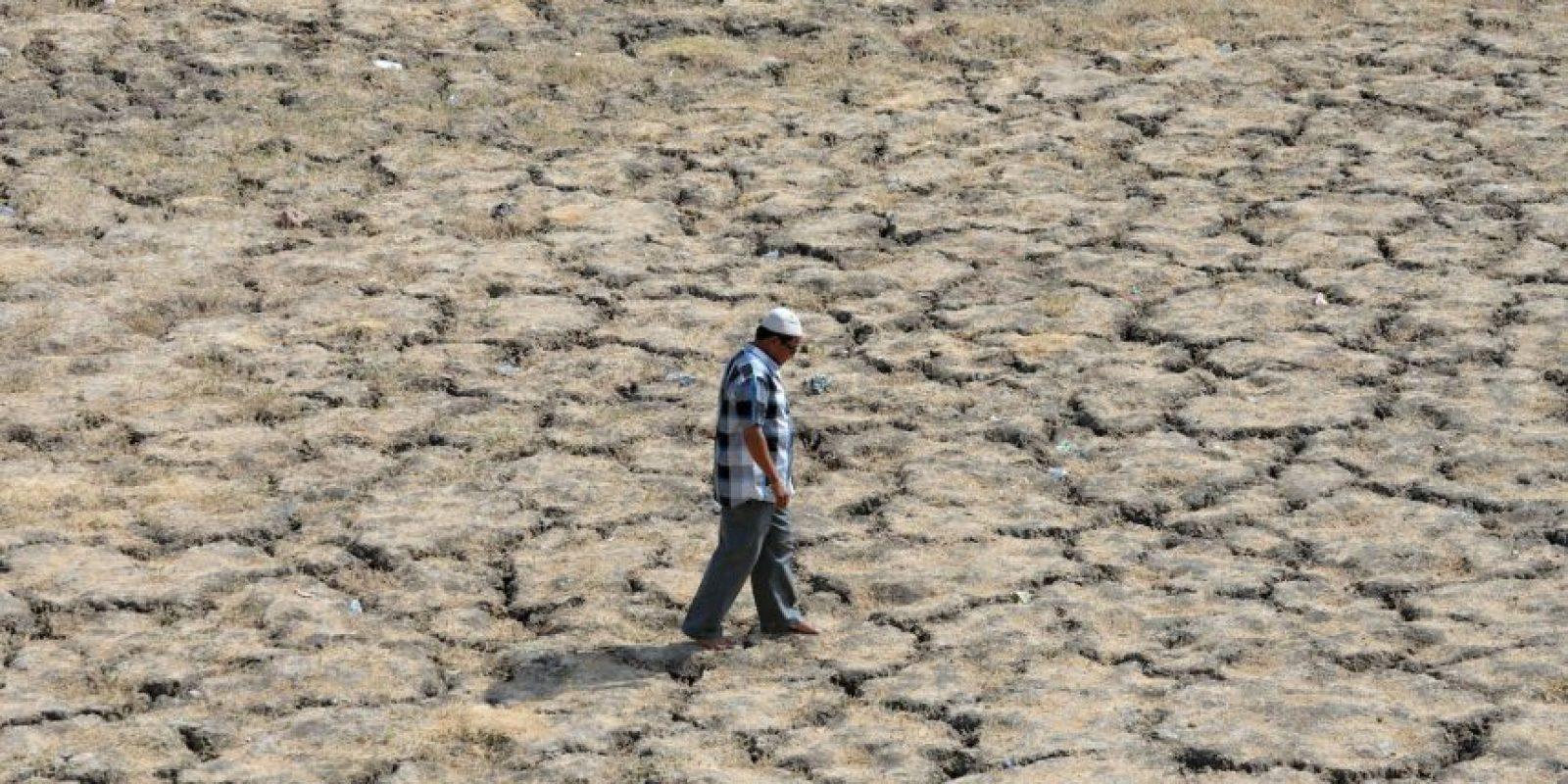 Sequía en India Foto:AFP