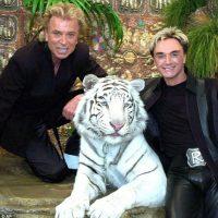 Esto sucedió en 2003. El tigre atacó a Roy y murió el año pasado. Foto:vía AP