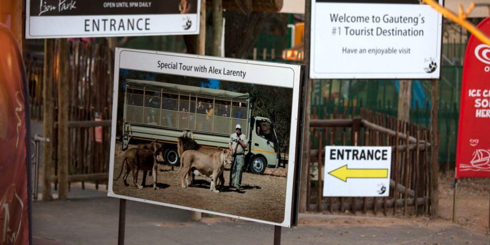 Sucedió en Johannesburgo. Foto:vía Barcroft Media