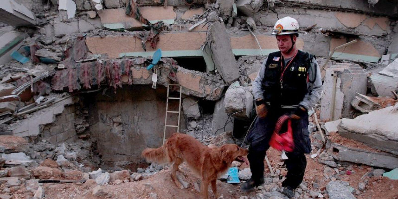 El gobierno de Haití estimó que 250 mil casas se destruyeron Foto:Getty Images