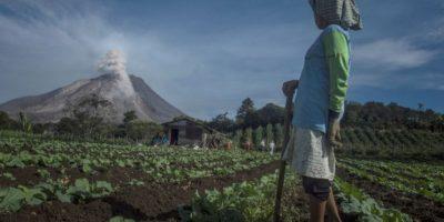 Erupción del Volcán Monte Sinaubug, en Indonesia Foto:AFP