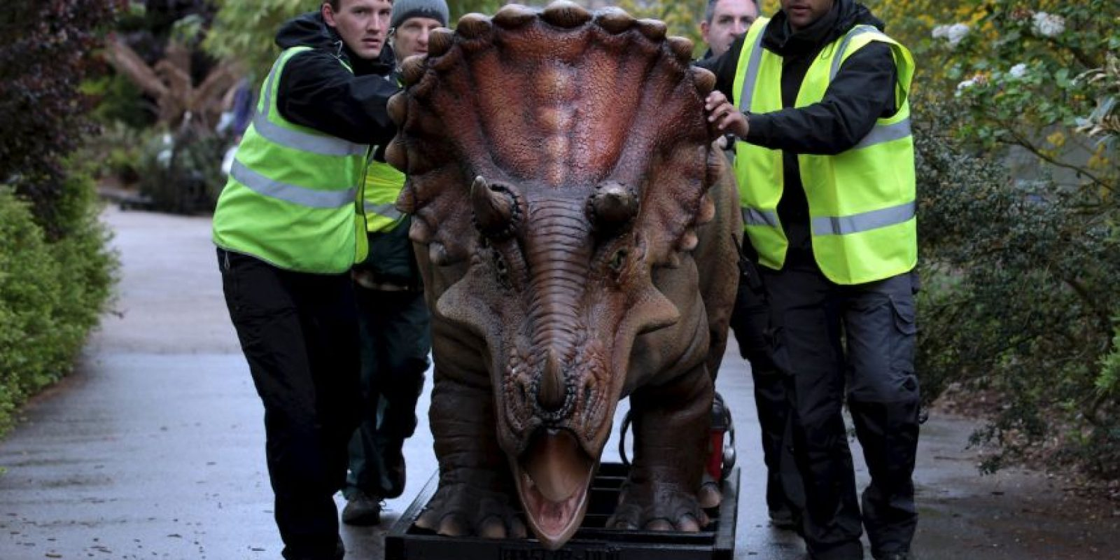 El hallazgo del cráneo fósil aporta nuevos datos sobre la evolución de los dinosaurios. Foto:Getty Images