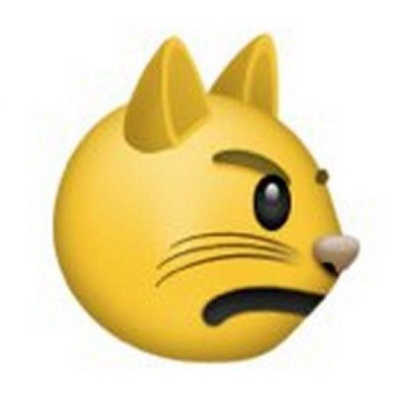 2) El gato con ojos enojados y un rostro retador. Foto:emojipedia.org