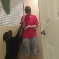 ¿Saben cómo se mide la inteligencia de los perros? Foto:Imgur
