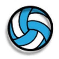 Pelota de voleibol. Foto:emojipedia.org
