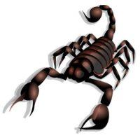 Escorpión. Foto:emojipedia.org