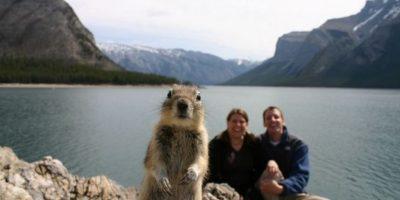 Esta es la foto más feliz del mundo según la ciencia. Foto:Coca-cola/Getty