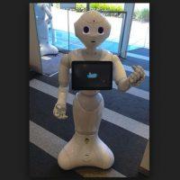 La cabeza del robot tiene cuatro micrófonos, dos cámaras de alta definición (en la boca y la frente) y un sensor de profundidad 3-D (detrás de los ojos). Hay un giroscopio en los sensores del torso y el tacto en la cabeza y las manos. La base móvil tiene dos sonares, seis rayos láser, tres sensores de parachoques y un giroscopio Foto:Wikicommons