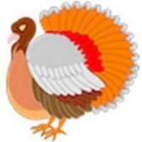 Pavo. Comido comúnmente en el Día de acción de gracias en Estados Unidos. Foto:emojipedia.org