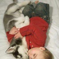 ¡A dormir! Foto:Reddit