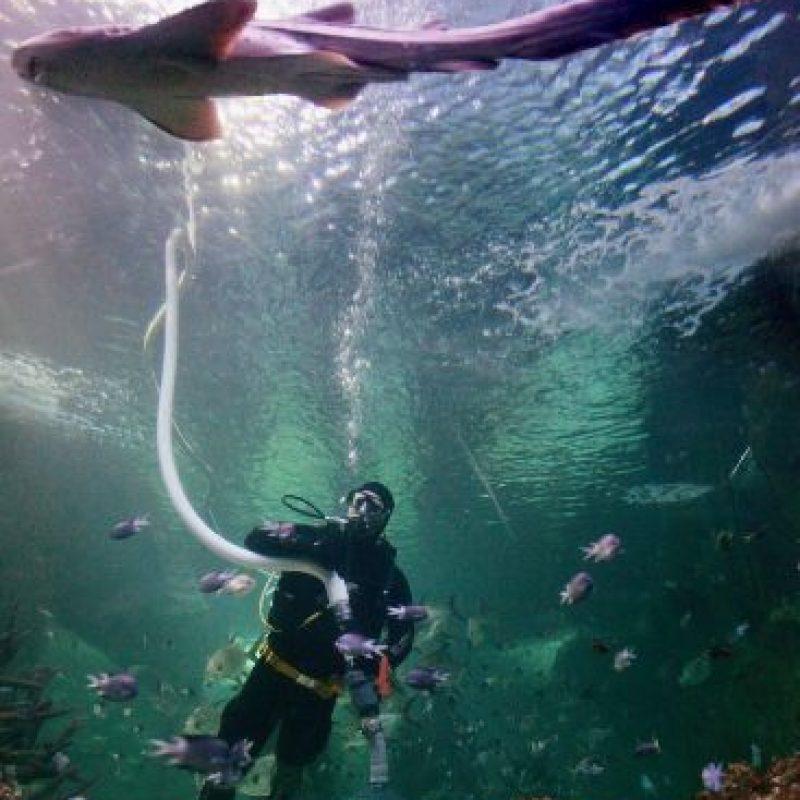 1. Playa Smyrna, en Florida, Estados Unidos. Foto:Getty Images
