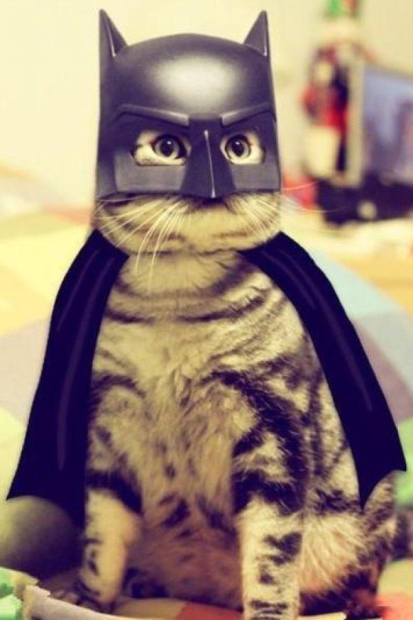 Batman Foto:Imgur