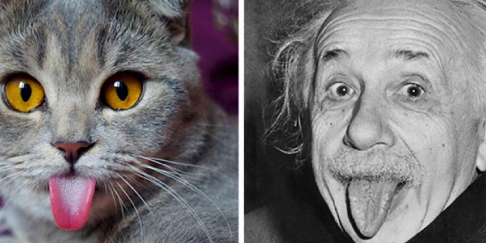 ¿Se parecen? Foto:Tumblr