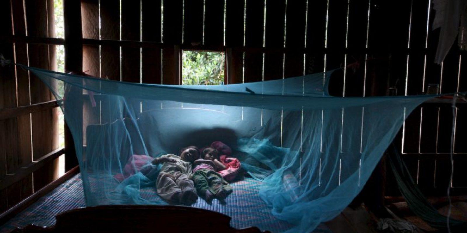 7. Los Centros para el Control y la Prevención de Enfermedades de los Estados Unidos (CDC, por sus siglas en inglés) indican que cada año mueren más de un millón de personas en el mundo a causa de la malaria. Foto:Getty Images