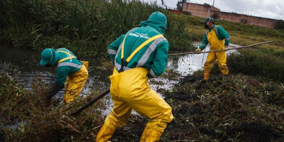 Así rescatan uno de los humedales más importantes de Bogotá
