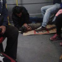 Foto:Facebook Zoonosis Bogota