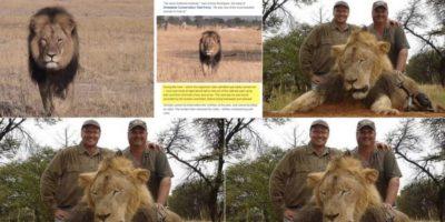 Lo mató el odontólogo Walter Palmer, en el parque nacional Hwange, en ese país. Él y un grupo de cazadores, que trataron de destruirle el collar que tenía un sistema GPS para ubicarle. Foto:vía Twitter