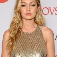 También se rumuró una relación de Lewis con la modelo Gigi Hadid. Foto:Getty Images