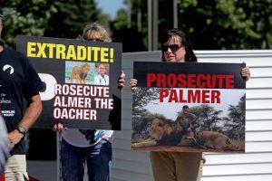 Palmer lanzó un comunicado. Foto:vía Getty Images