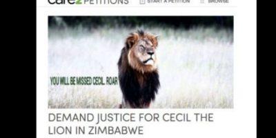 Hay peticiones por justicia para Cecil. Foto:vía Care2 Petitions