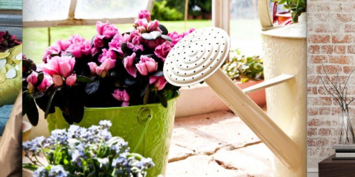 3 estilos para decorar su hogar fácil y económico