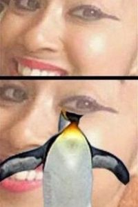 6. ¿Pingüinos? Foto:Pinterest