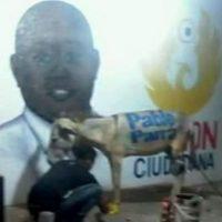 Las autoridades locales ya se están encargando del caso Foto:vía El Heraldo