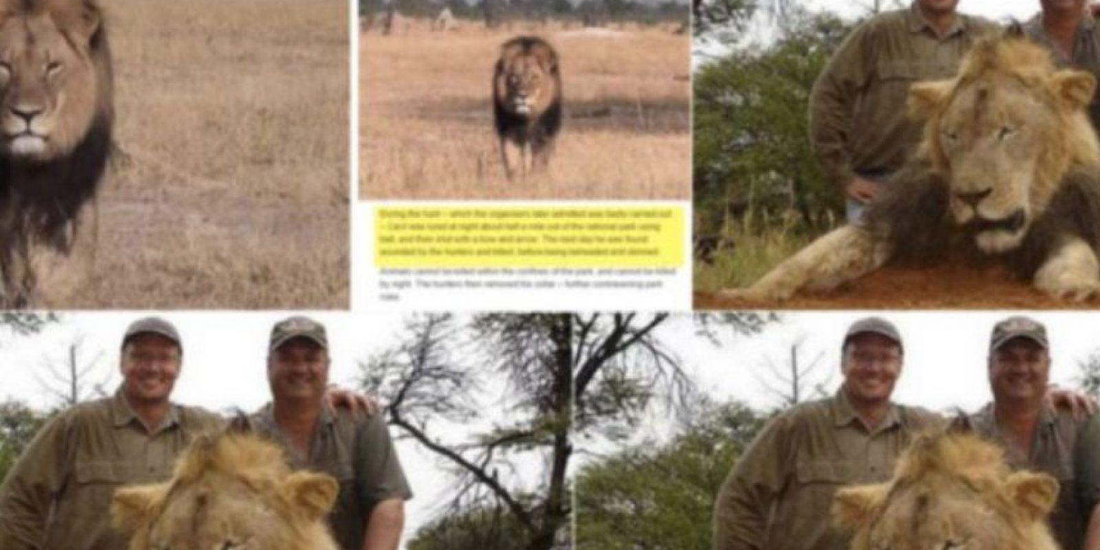 ¿Se acuerdan de Walter Palmer, el que mató al león Cecil? Foto:vía Twitter