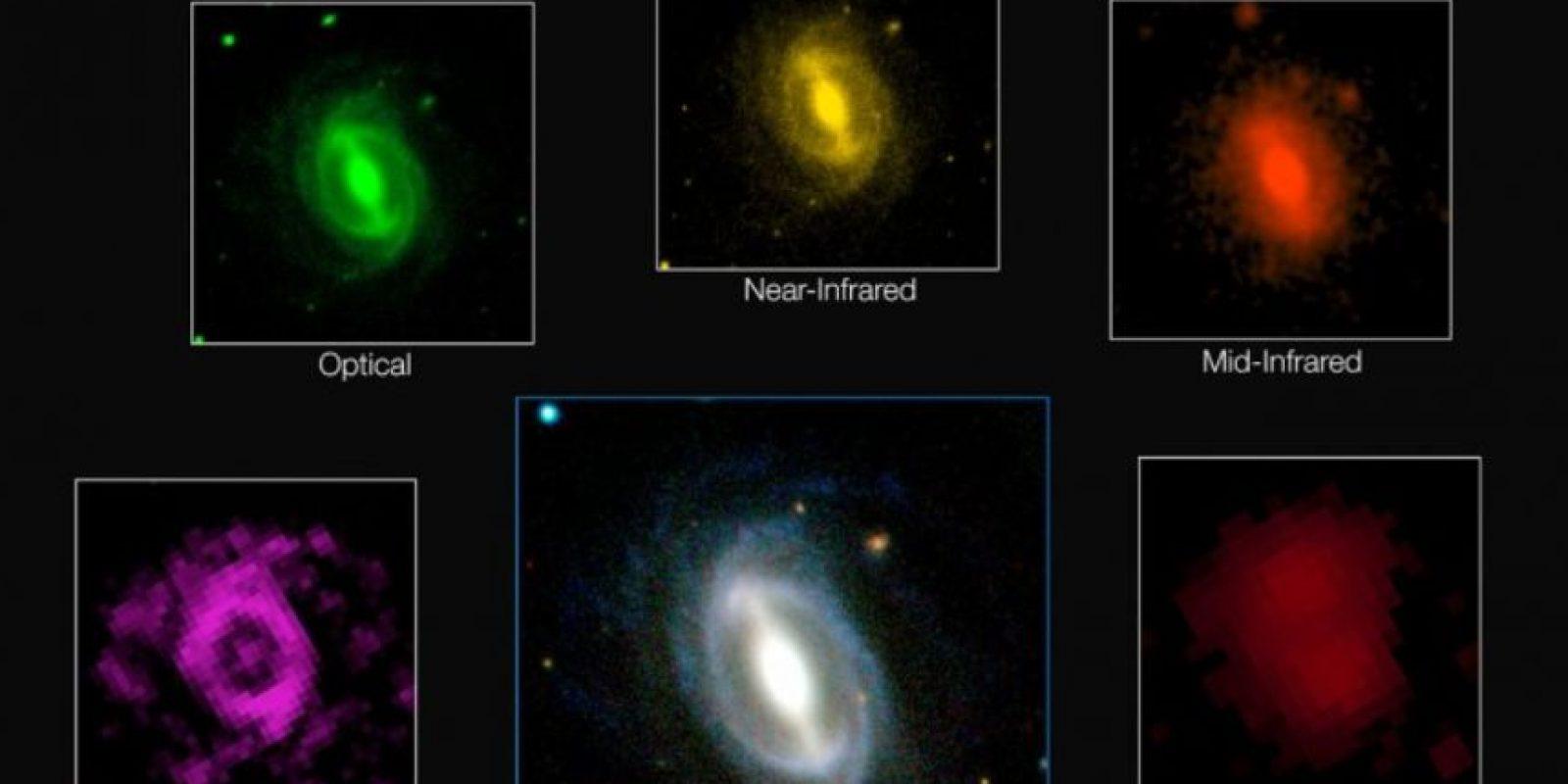 """Simon Driver, explicó que toda la energía del universo fue creada en el """"Big Bang"""". Foto:Vía icrar.org"""