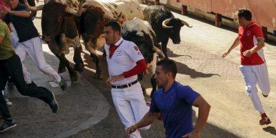 Los encierros consisten en correr delante de una manada no muy numerosa de toros, novillos o vaquillas. Foto:AFP
