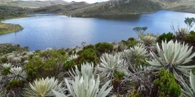Foto:www.parquesnacionales.gov.co