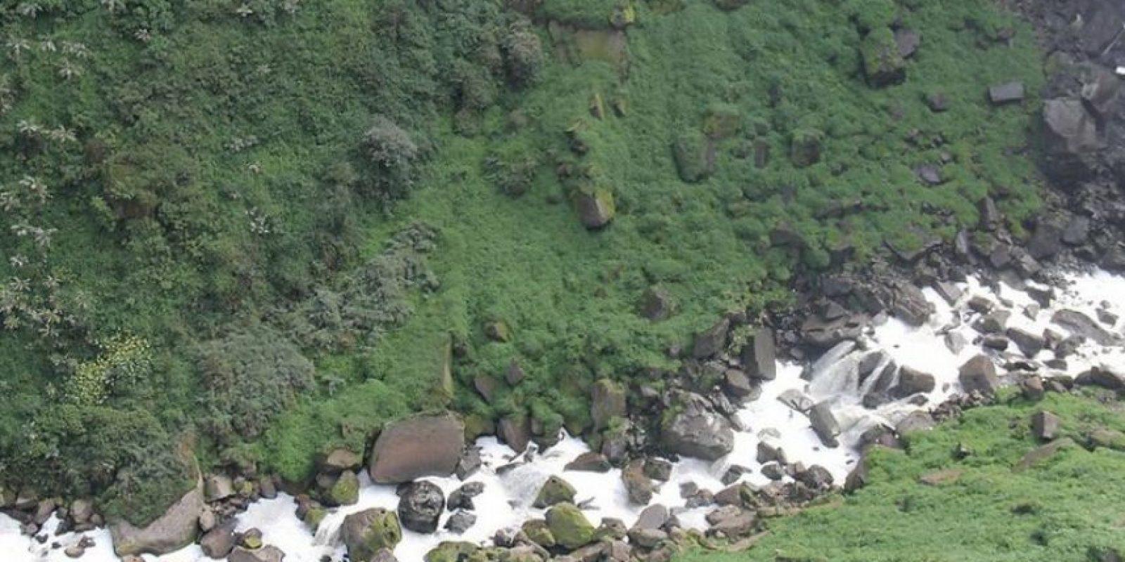 La alta contaminación que se registra en el río Bogotá ha colaborado con la desaparción de varias especies animales.