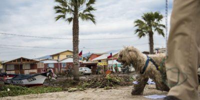 Para hoy, continuará de visita en otras regiones Foto:AFP