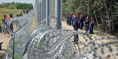 Policías vigilan la frontera entre Hungría y Serbia. Foto:AFP